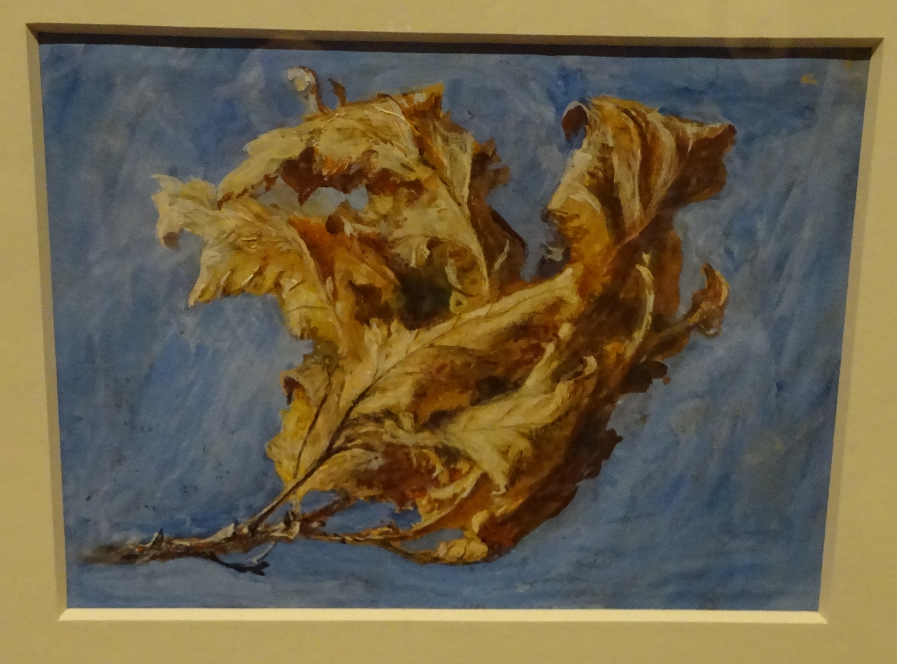 16 DSC07370 ruskin spray dead oak leaves 1879 166.jpg