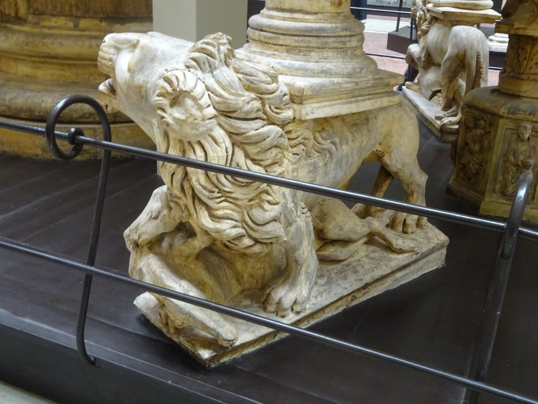 + lions DSC02212.jpg