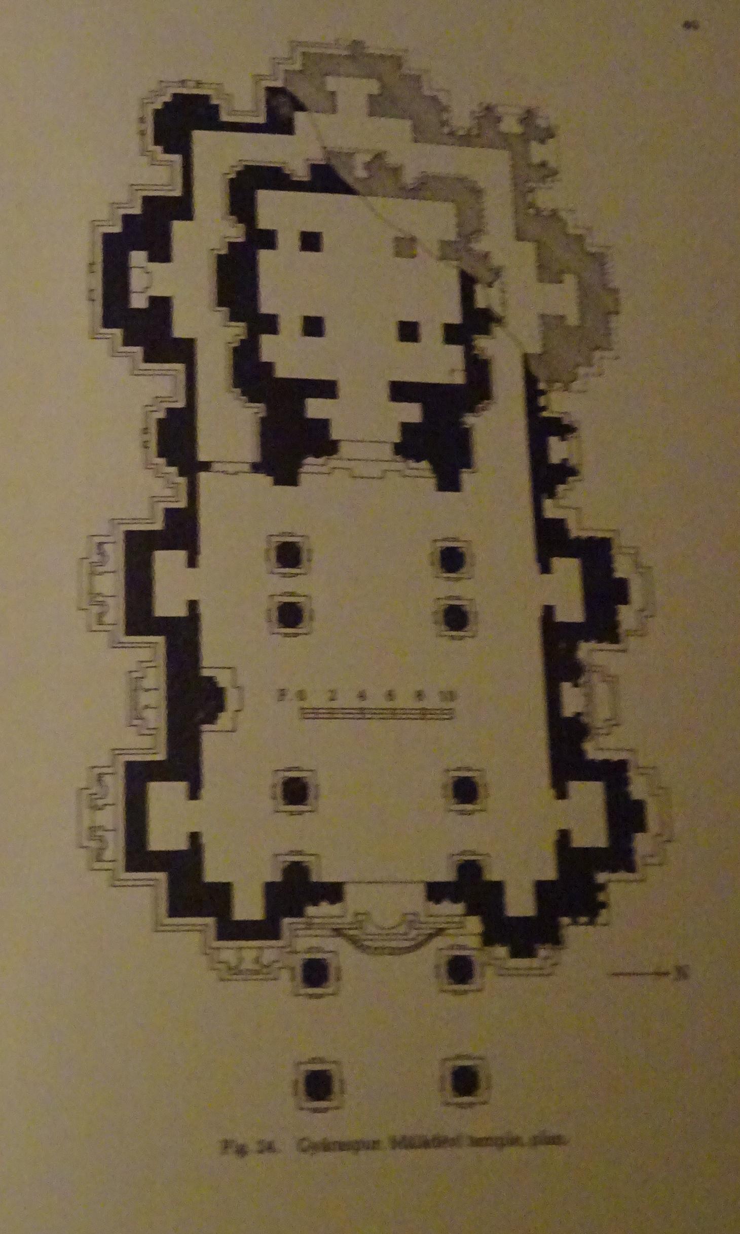 1 gyaraspur maladevi plan DSC04894